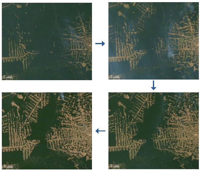 Évolution de la déforestation, forêt amazonienne, Brésil, 2000 - 2012 - NASA